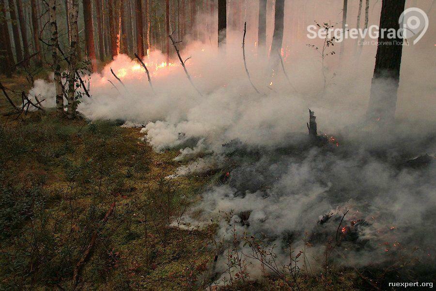 что делать в случае пождара в лесу или на торфянике.jpg