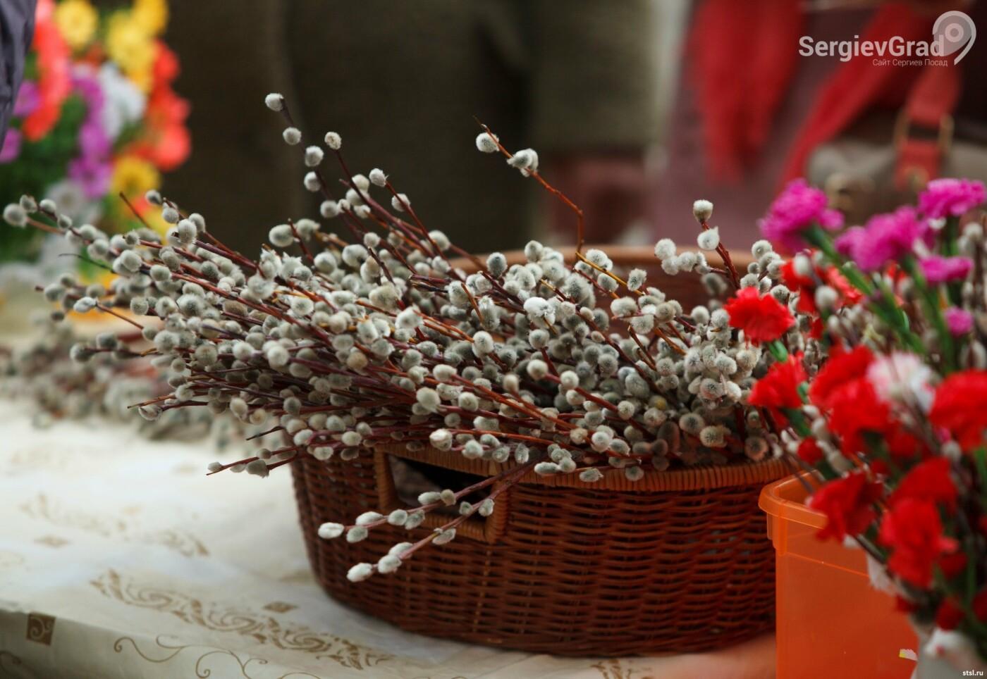 12 апреля православные христиане отмечают Вербное воскресенье, фото-1