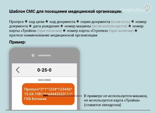 Как в Московской области оформить электронный пропуск через мобильное приложение, SMS и портал «Госуслуги», фото-2