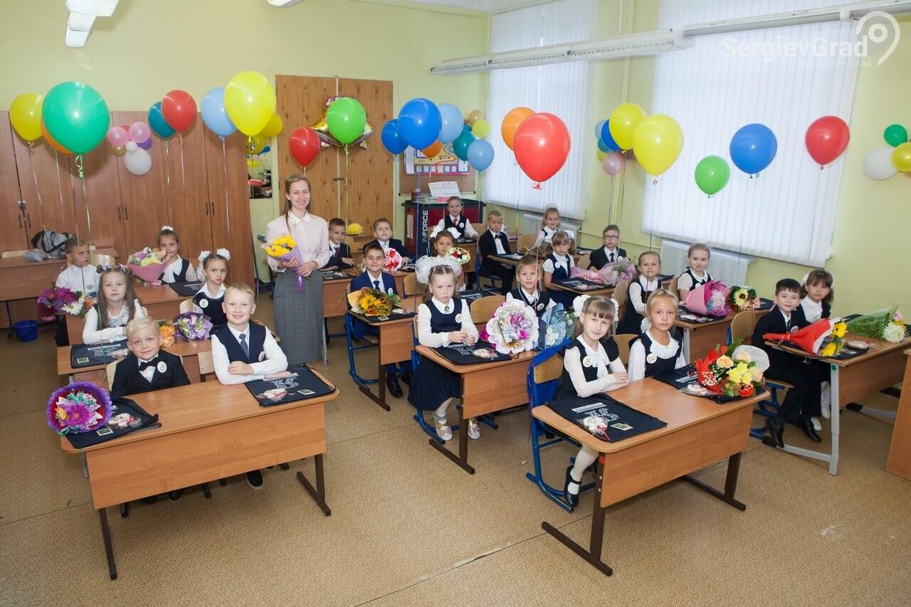 Горожанкина Анастасия Александровна – участник конкурса «Любимый учитель», фото-1