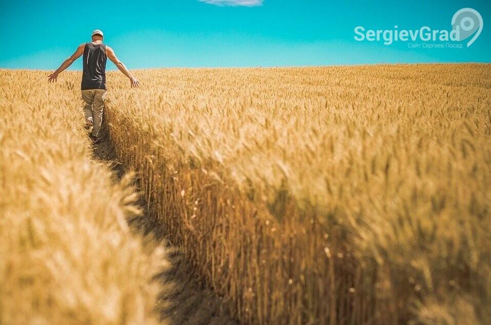 Фермерам Сергиева Посада предоставят торговые места на льготных условиях