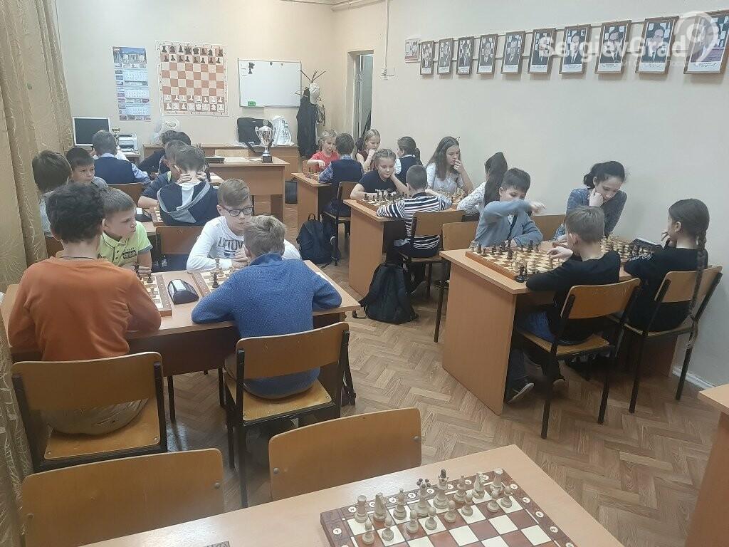 Команда гимназии №5 стала победителем шахматного турнира «Белая ладья», фото-1