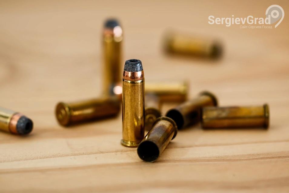Полиция изъяла арсенал оружия и боеприпасов в Сергиевом Посаде