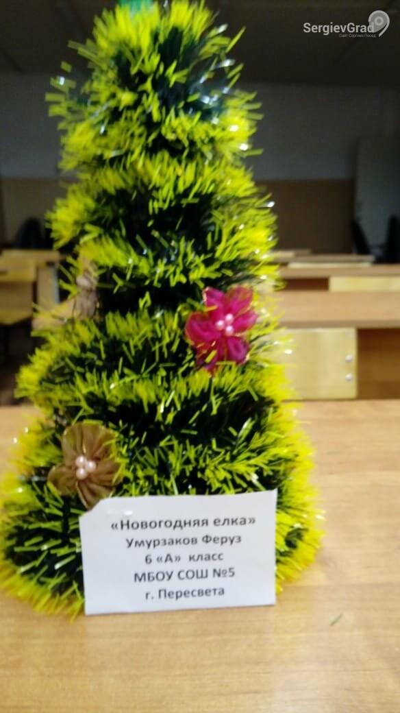 Участник конкурса «Моя новогодняя поделка» – Умурзаков Ферук, МБОУ СОШ №5