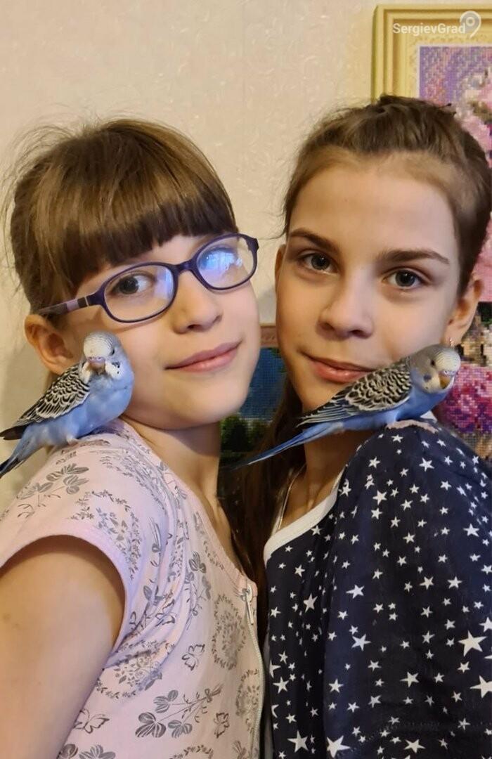 Участники конкурса «Верный друг»: Попугайчики Ромка и Рокки
