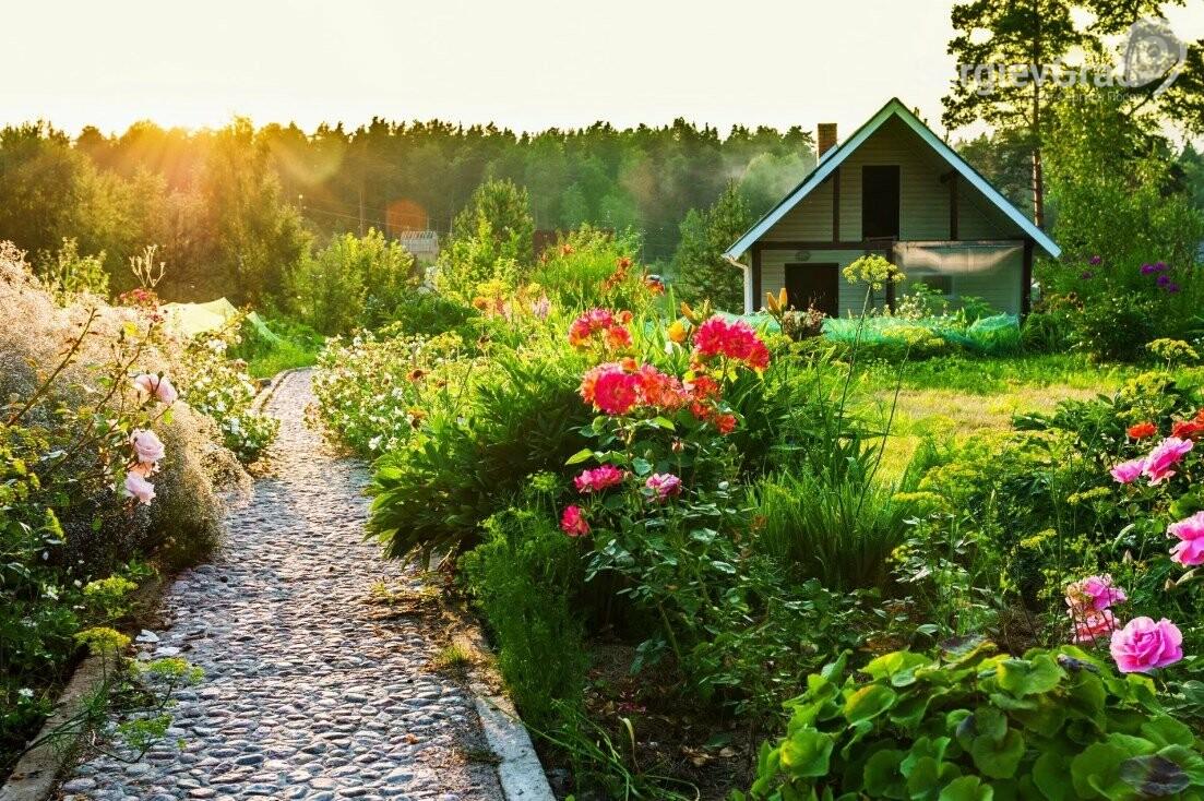 Бесплатную передачу в собственность дачных земель хотят продлить до 2026 года
