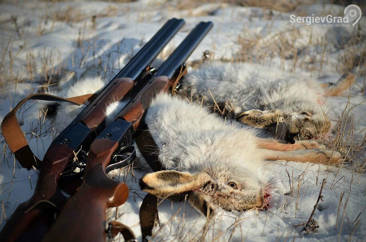 В Московской области подходит к концу сезон охоты на пушных животных