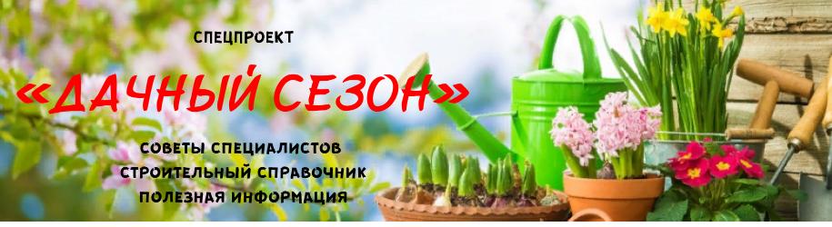 Спецпроект «Дачный сезон»